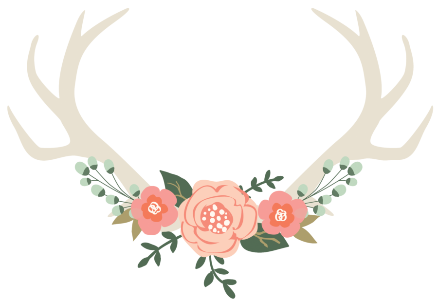 Autumn Owl Photography